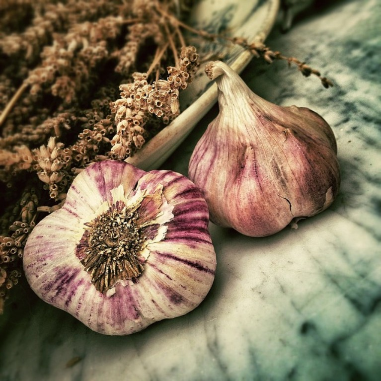 Healthy Garlic | Dr Jerod